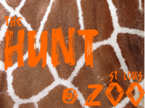 The Hunt @ the Zoo Flyer
